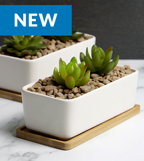 Ceramic Planter and Bamboo Base x 2