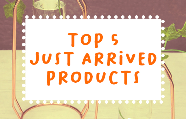 Our September Top 5 Just Added Products